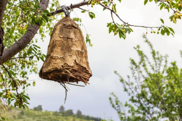 Beehive made from mud and straw