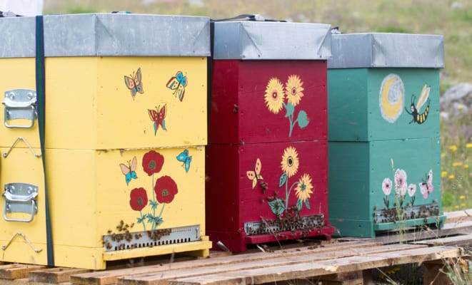 Beehives with flowers painted on them